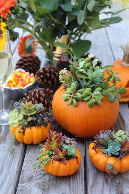 Got pumpkins? Put them to use with these DIY Thanksgiving centerpieces: