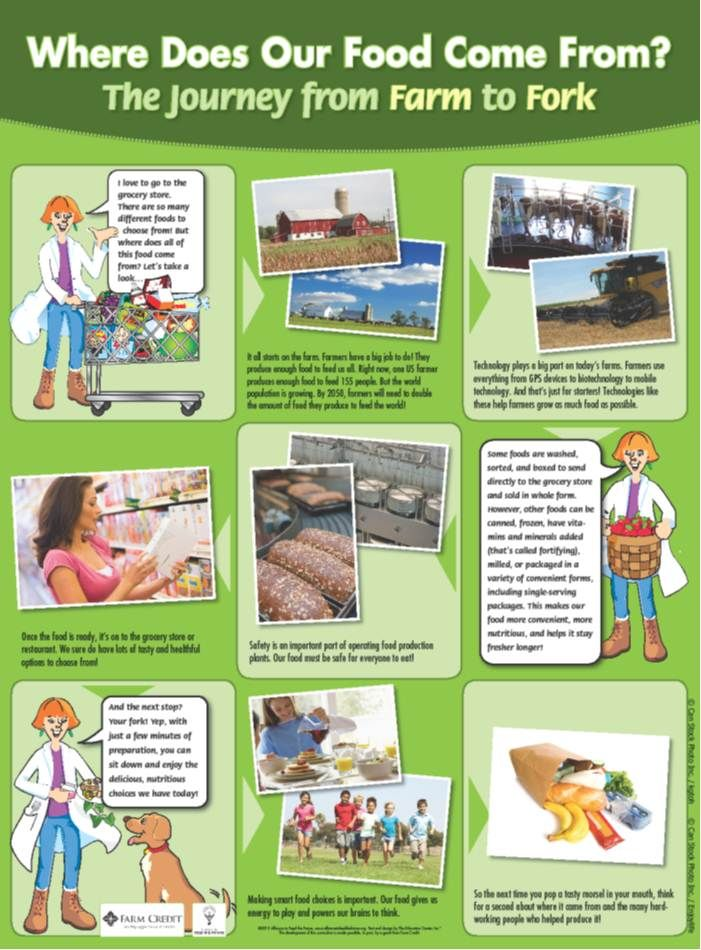 Farm to Fork Activities Poster Food Finder Pinterest