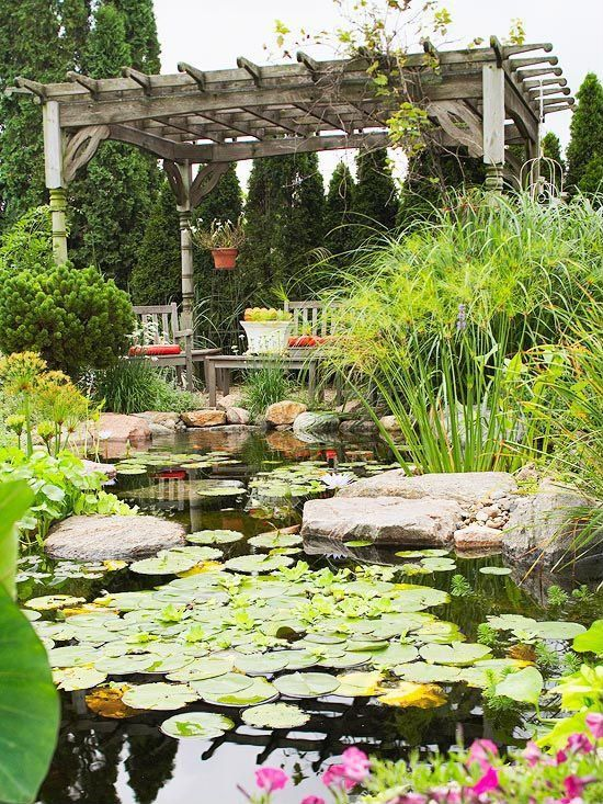DIY garden look Lilly pads make this pond look wildly
