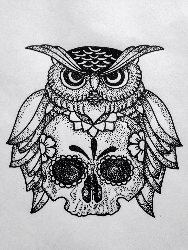 Owl and skull, dotwork, drawing, tattoo design drawing