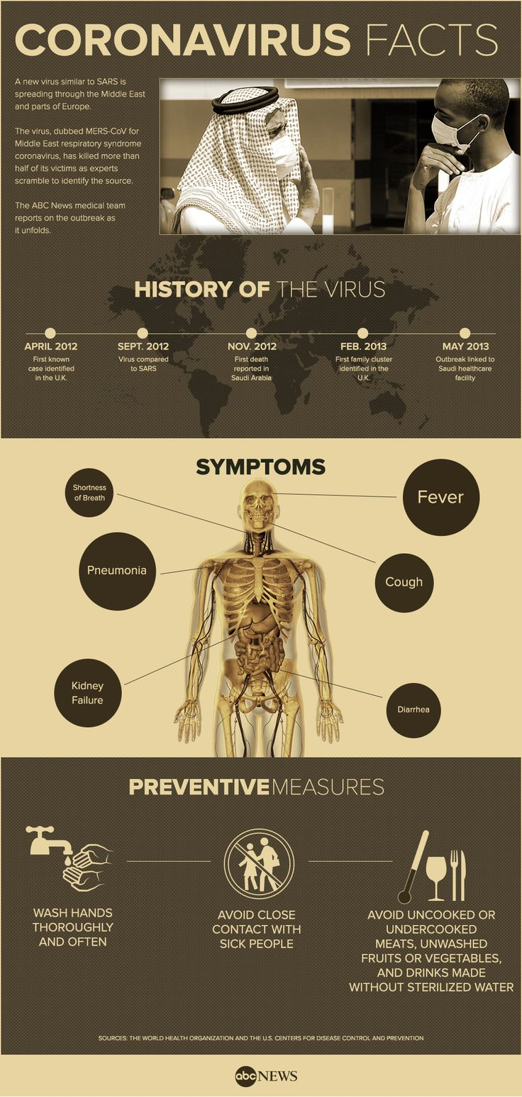 MERS Coronavirus Infographic ABCNews ABC News Health