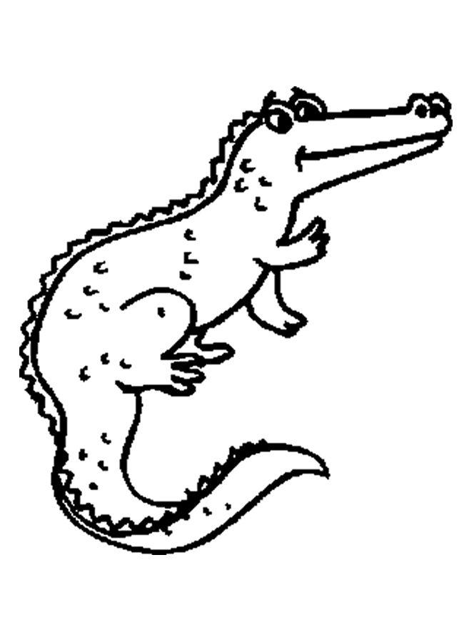 alligator coloring sheet aligator unit study pinterest