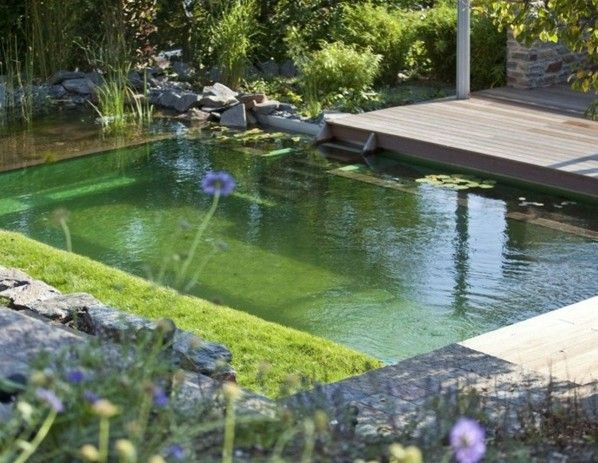 Water Garden Pools