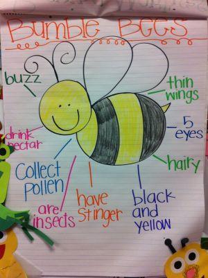 25 best ideas about Preschool Wele Letter on Pinterest | Classroom wele letter, Parent