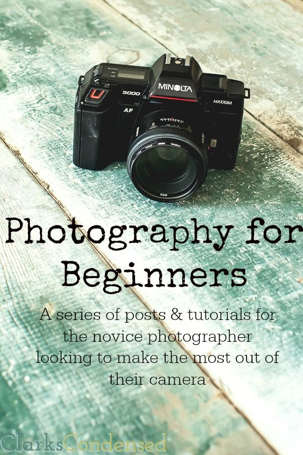 Photography for Beginners: A series of posts to help you take better pictures! #ClarksCondensed