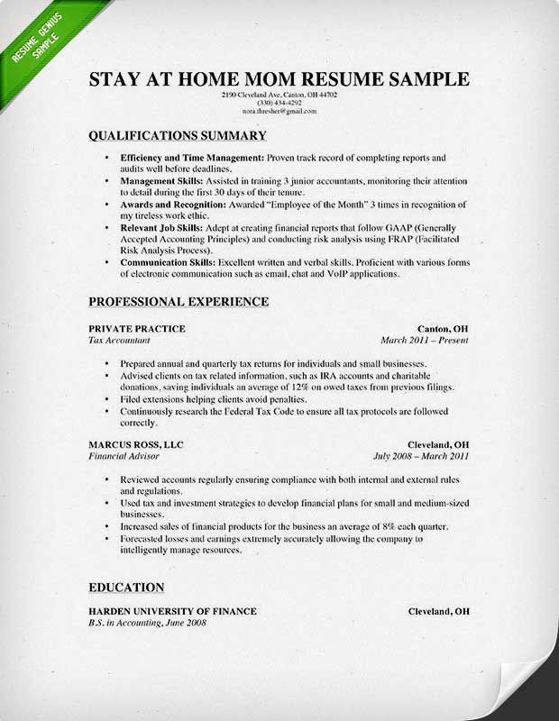 1000 ideas about professional resume examples on pinterest