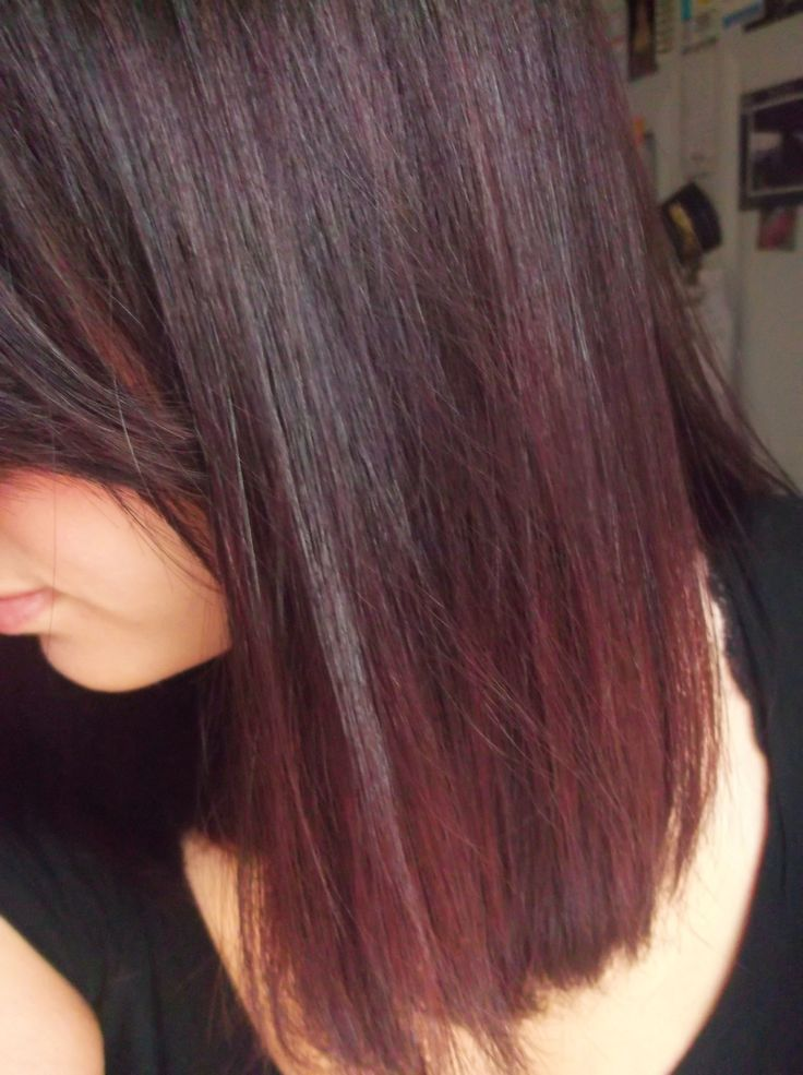 Black Cherry Hair Used Garnier Nutrisse Color Foam 3UR