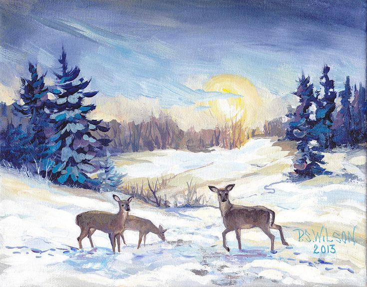 Deer In Winter Landscape By Peggy Wilson 2013 Art
