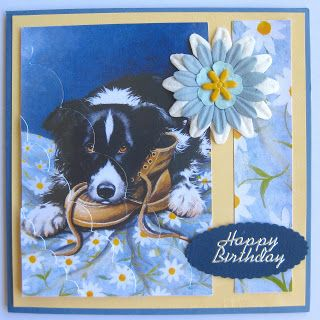 Border Collies Collie And Birthday Cards On Pinterest