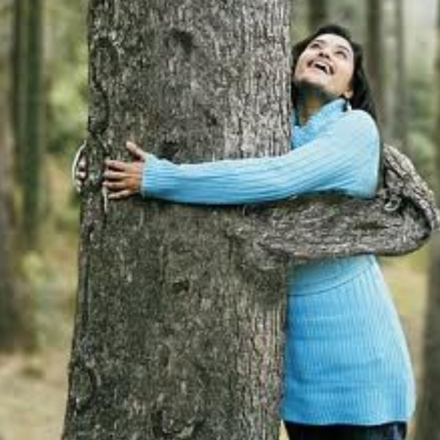 Earth Happily Gives A Tree Hug D What a Tree