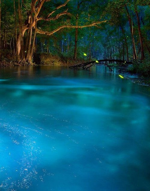 This natural spring looks like something out of a dream. But it's real & you can visit it right here in the USA…