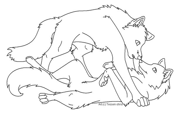 wolves in love wolves and anime wolf on pinterest