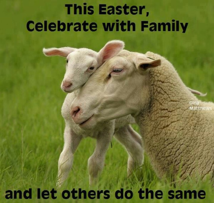 The last meat I ate was Easter ham, so this meme seems