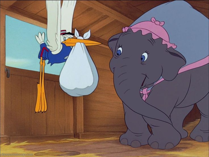 39 Best Images About Dumbo On Pinterest Disney Reunions