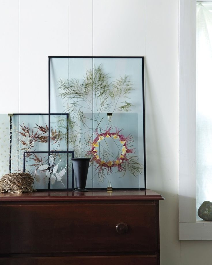 A Modern Way to Display Pressed Botanicals. Start by gathering some dried flowers or leaves. Next gather 2 clear panes of glass