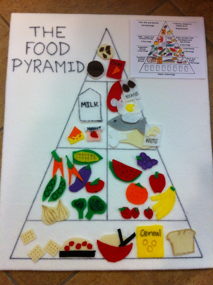 Food pyramid get food stickets and put little magets on