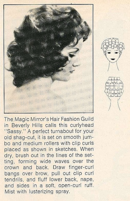 17 Best Images About Vintage Hair Setting Patterns On