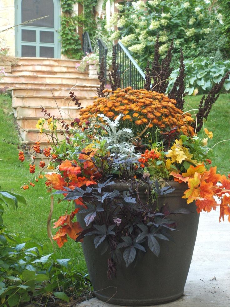 Fall container garden. Need to swap out begonias and put