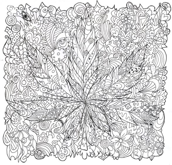 Mushrooms to download - Mushrooms Kids Coloring Pages | 561x587