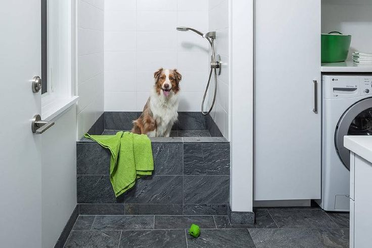 17 Ideas About Dog Shower On Pinterest Dog Rooms Wash Room And Dog Washing Station