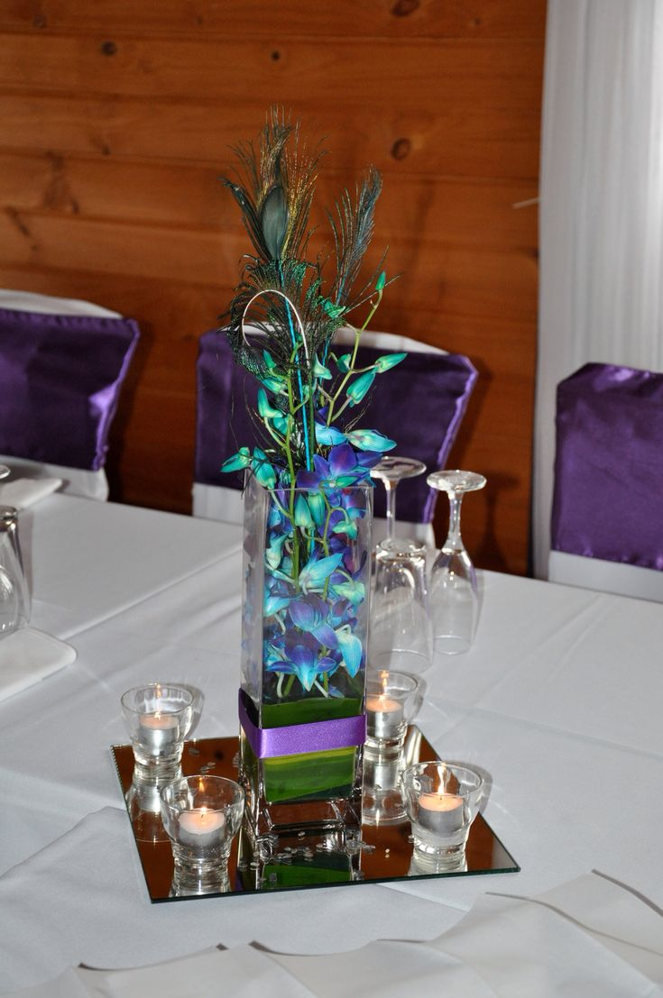 1000 Images About Purple Peacock Amp Paua Themed Wedding On