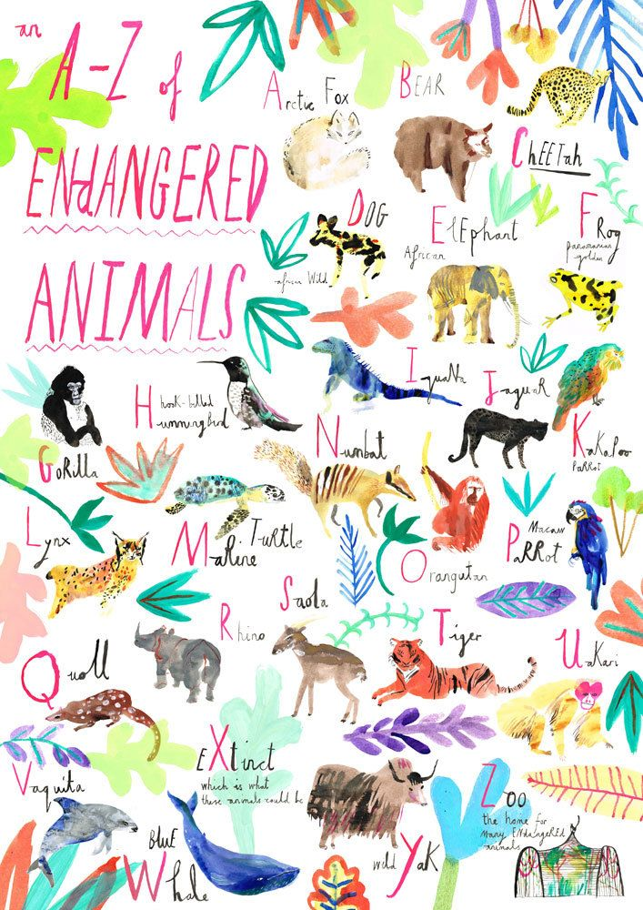 An AZ of endangered animals. Stuff We Love Pinterest