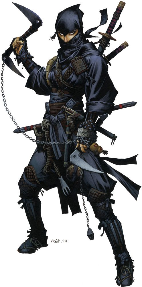 1000 Images About Ninja Assassin On Pinterest Armors