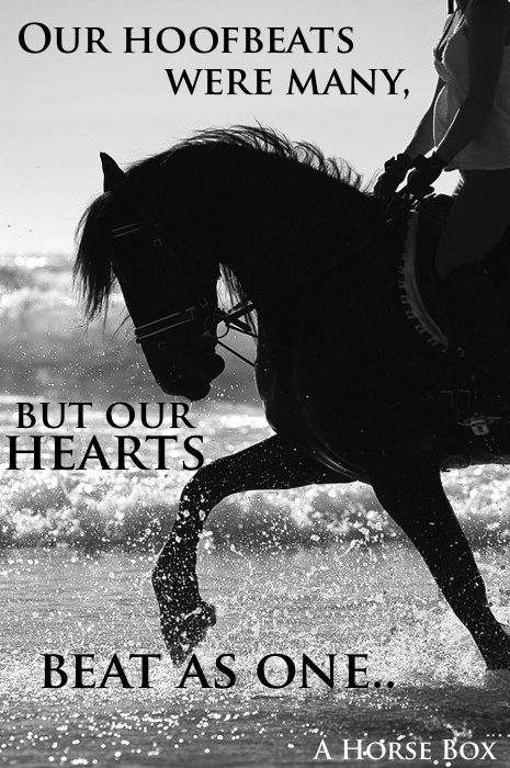 Our Hoofbeats May Vary But Our Hearts Beat As One Love
