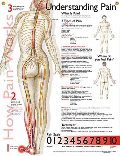 Faces Scale Pain Poster