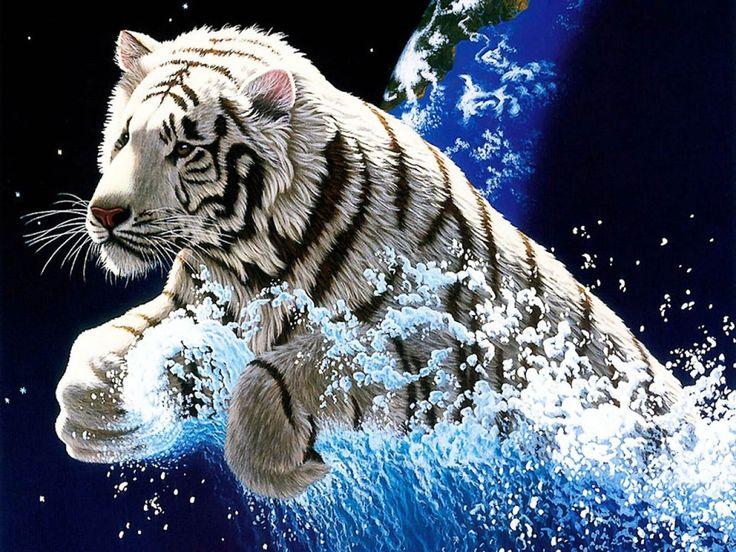 Desktop year of the tiger images wallpaper Download 3d HD