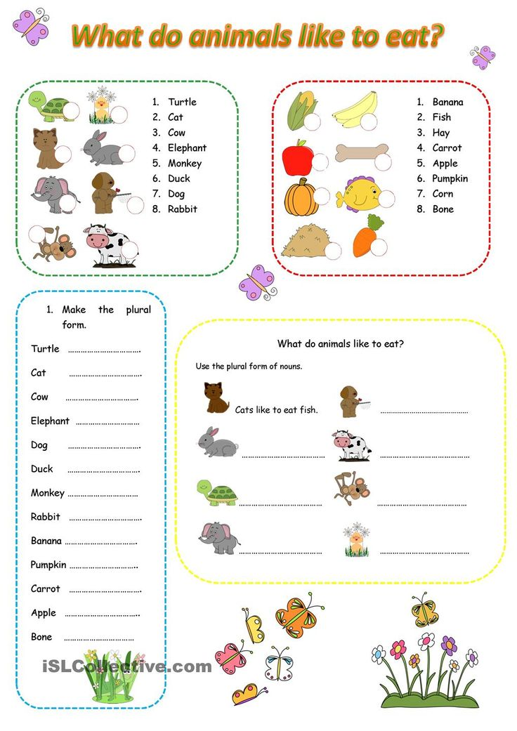 What do animals like to eat? ESL worksheets of the day
