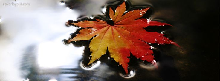 17 Best Ideas About Fall Facebook Cover Photos On