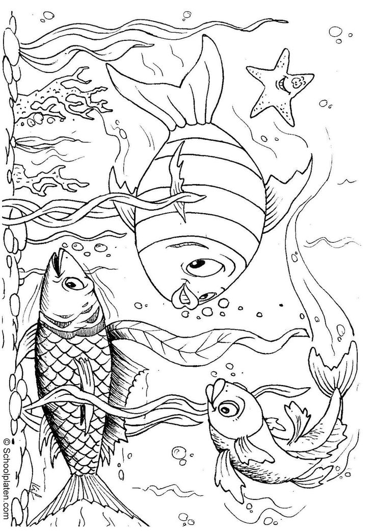 1000 images about coloring book on pinterest ocean coloring