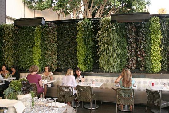 Living Wall True Food Kitchen in Newport Beach by Scott