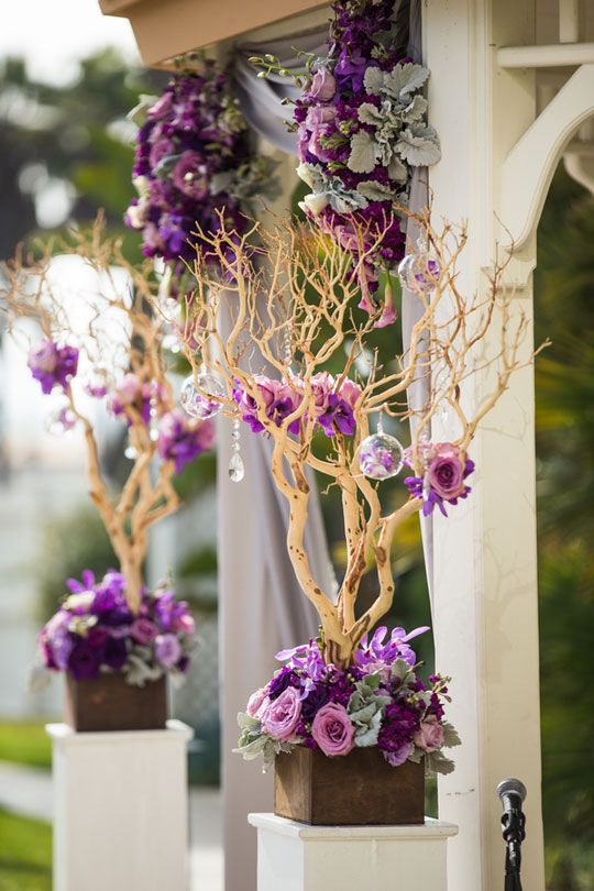 78 Best Images About Stunning Weddings Manzanita Trees On