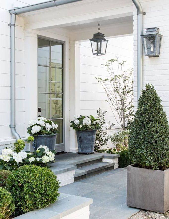 25 Best Front Porch Plants Ideas On Pinterest Fullers