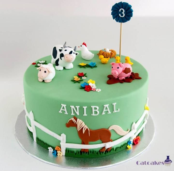 17 Best Images About Farm Cakes For Kids On Pinterest