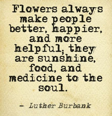 Image result for Wild flowers quote