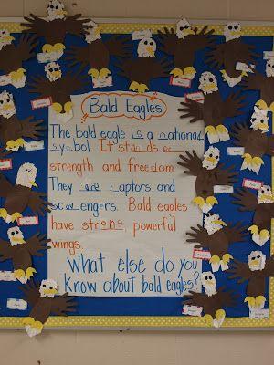 Bald Eagle Bulletin Board Display Eagle Classroom