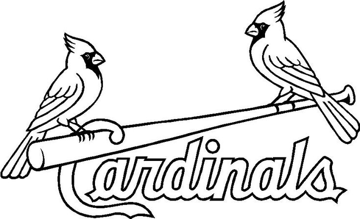 st louis cardinals st louis and related post on pinterest