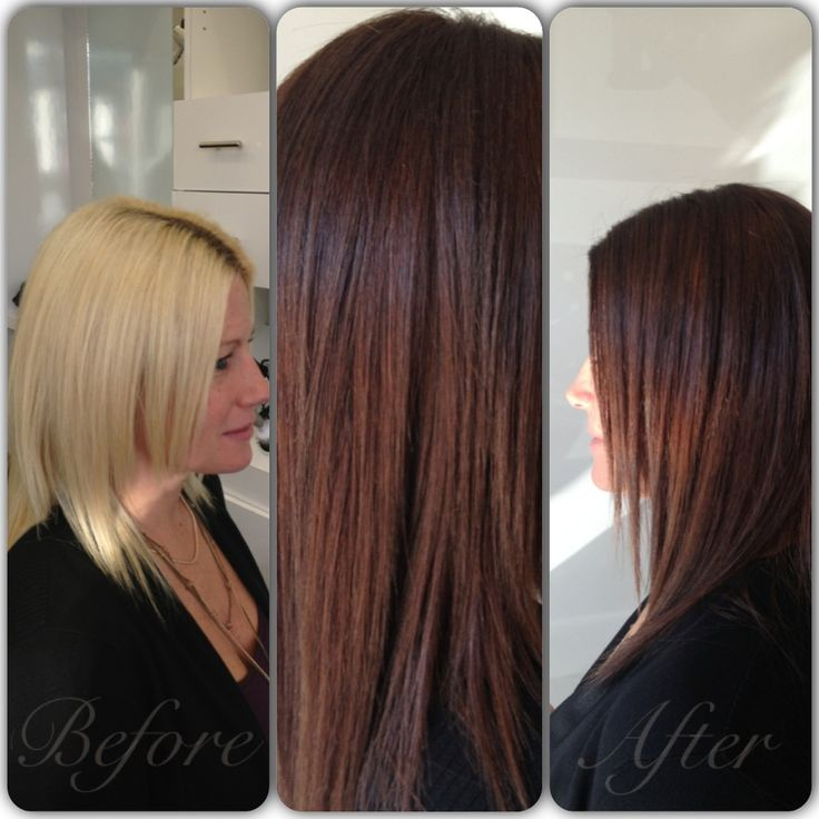 1000 Images About Wella On Pinterest Red Brown Hair