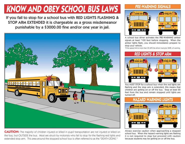Do you know the school bus laws? Its almost back to school