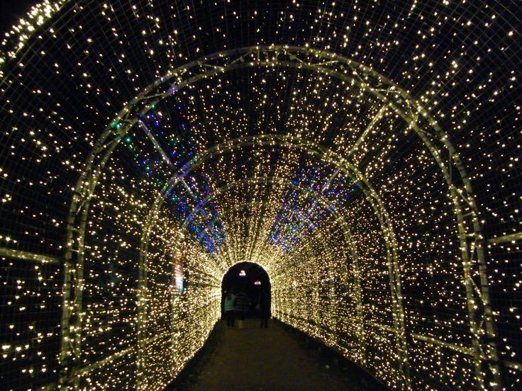 Walkway of fairy lights at Kew Gardens in London, as part