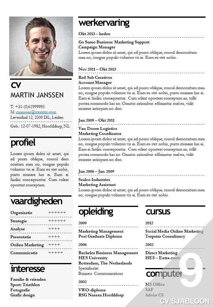 cv voorbeeld kaders CVvoorbeelden Pinterest Zoeken