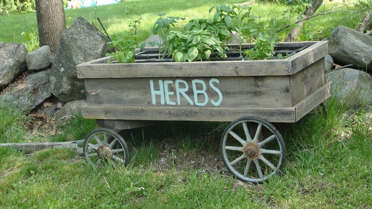 DIY herb garden made from an old wooden wagon and window