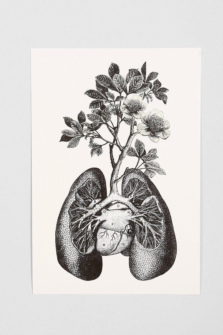 Cirque DArt Lungs Art Print Really Really Cool But Not