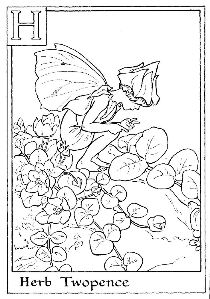 flower fairies coloring pages,fairies, coloring page