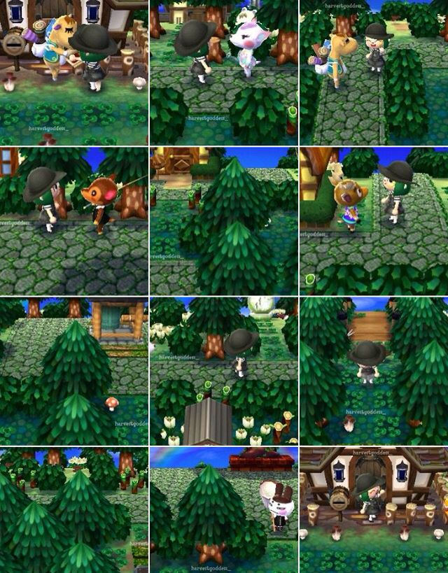 Beautiful forest theme for Animal Crossing New Leaf