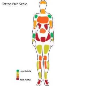 25 best ideas about Tattoo pain chart on Pinterest