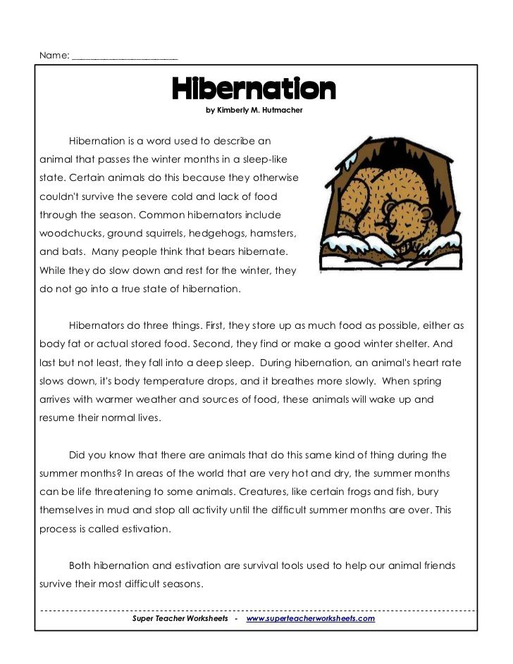 bird migration worksheets Google Search Science